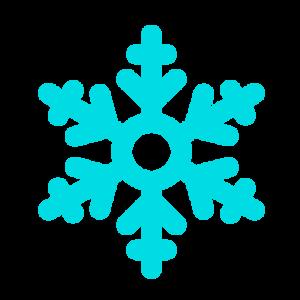 iceshavers snowflake favicon
